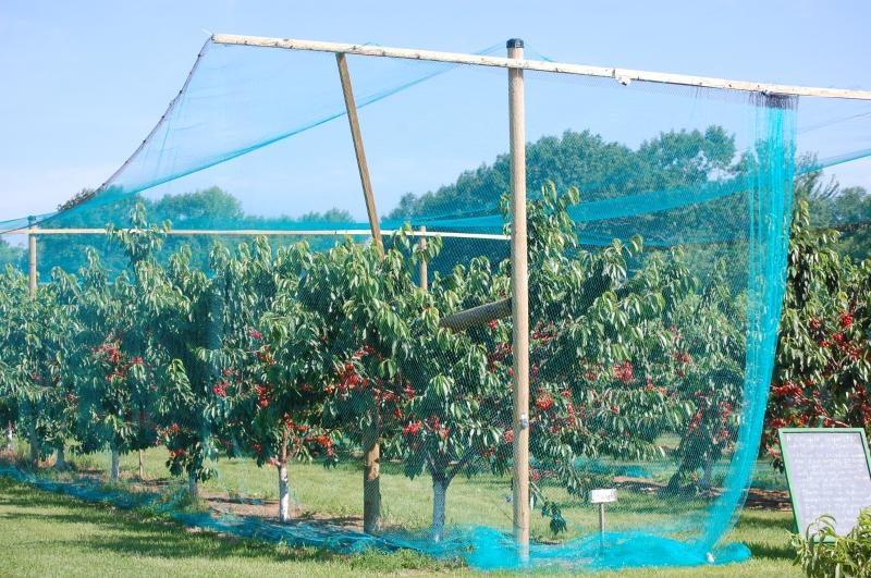 Agricultural Nets Smart Net Systems Industrial Netting