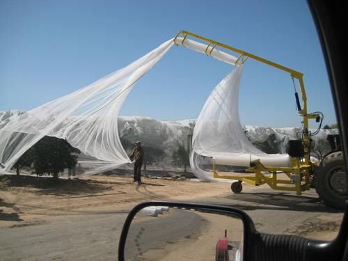 Citrus Netting - Smart Net Systems - Industrial Netting Systems