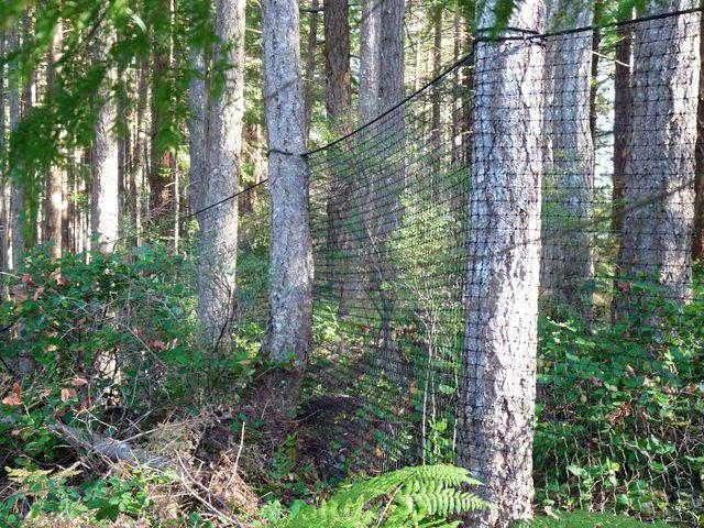 Deer Fencing Smart Net Systems Industrial Netting Systems